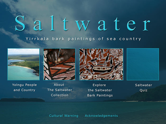 Saltwater touch screen
